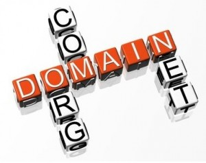 Registering Domain Name for Multiple Years