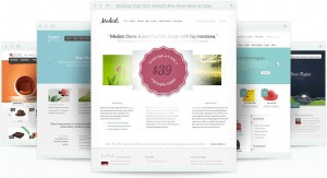 Buy Elegant Themes Now - Its a Great Deal